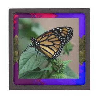 La naturaleza LINDA del insecto de la mariposa Cajas De Recuerdo De Calidad