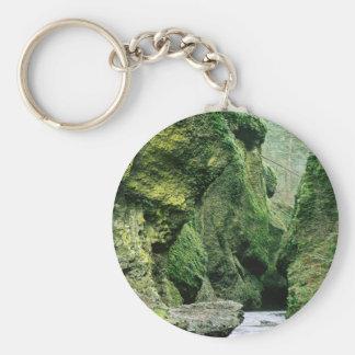 La naturaleza oscila el molde verde llavero