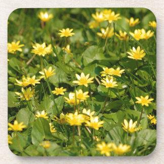 La NATURALEZA Small-yellow-flowers-in-grass1957 FL Posavasos De Bebidas