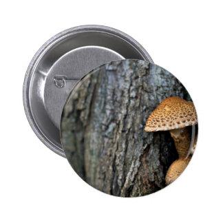 La naturaleza temática, las setas desiguales de pin redondo 5 cm
