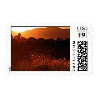 La neblina de oro en la puesta del sol ilumina el sellos postales