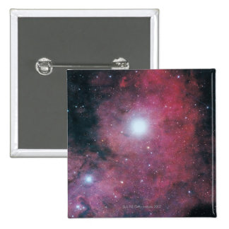 La nebulosa de Dumbell Pins