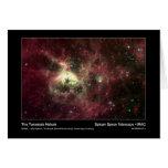 La nebulosa del Tarantula - telescopio espacial de Tarjeton