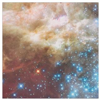 La nebulosa protagoniza el scienc fresco del telas