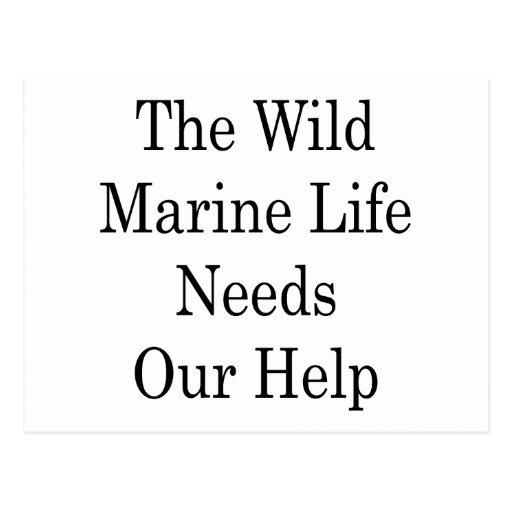La necesidad salvaje de la vida marina nuestra postal