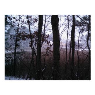 La niebla del invierno postal