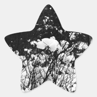La nieve formó escamas paraíso pegatina forma de estrella