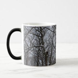 La nieve remató los árboles del invierno - árboles taza mágica