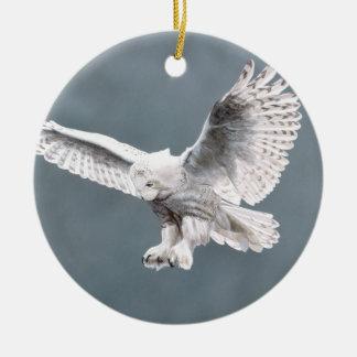 La nieve se va volando el ornamento adorno