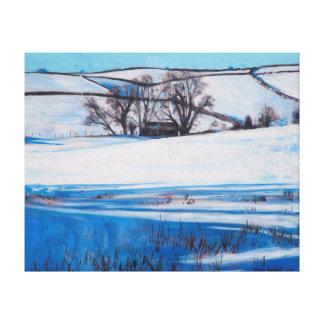 La nieve sombrea 2010 impresión en lienzo