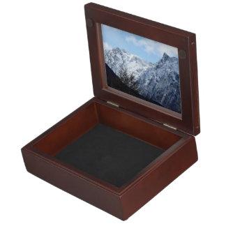 La nieve temática, fresca azul relucir en el top cajas de recuerdos