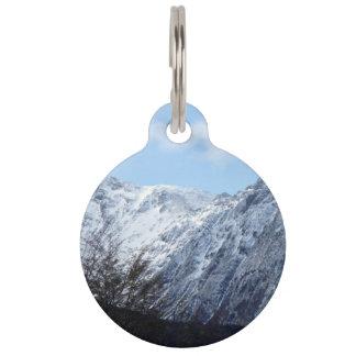 La nieve temática, fresca azul relucir en el top placa de mascota