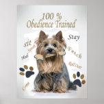 La obediencia de Yorkie el 100% entrenó al poster