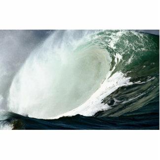 La onda hawaiana provoca su poder esculturas fotograficas