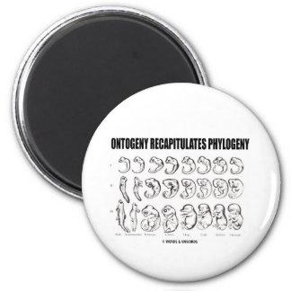 La ontogenia recapitula la filogenia (la biología) iman de nevera