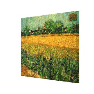 La opinión de Van Gogh de Arles w irisa, paisaje d Lona Envuelta Para Galerias