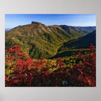 La opinión del otoño de la garganta de Linville a  Impresiones