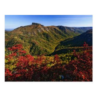 La opinión del otoño de la garganta de Linville a Postales