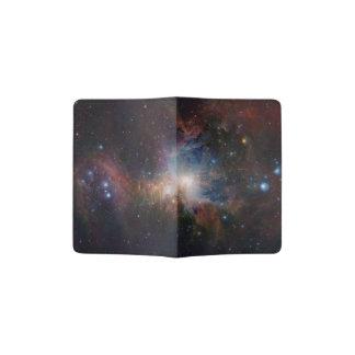 La opinión infrarroja de VISTA de la nebulosa de Porta Pasaporte