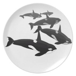 La orca de la placa de la orca sirve la decoración plato