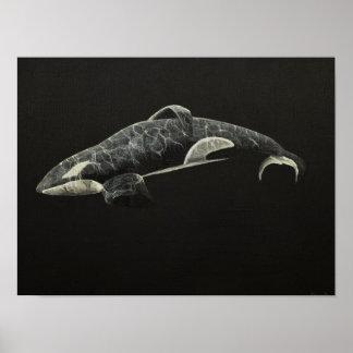 La orca póster