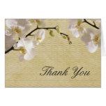 La orquídea blanca del vintage le agradece cardar tarjetas