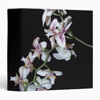 La orquídea blanca florece la carpeta