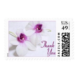 La orquídea blanca le agradece sella estampillas