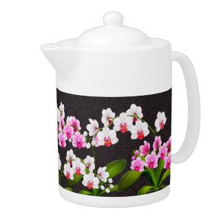La orquídea blanca rosada del Phalaenopsis florece