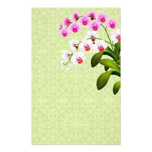 La orquídea blanca rosada del Phalaenopsis florece Papeleria
