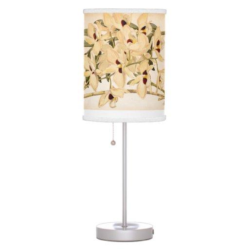 La orquídea botánica del vintage florece la lámpar