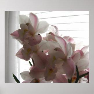 La orquídea de Anne Impresiones