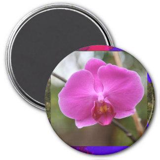 La orquídea de la plantilla florece el regalo imanes de nevera