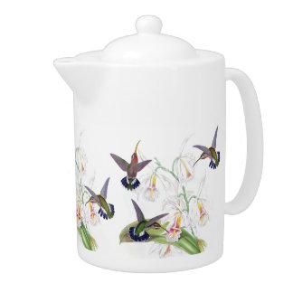La orquídea de los animales de los pájaros del