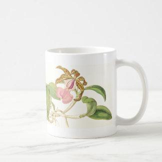 La orquídea del vintage florece la taza