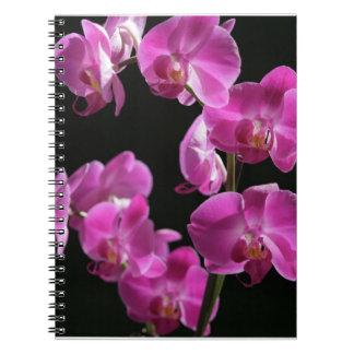 La orquídea florece cuaderno