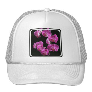 La orquídea florece gorra de béisbol