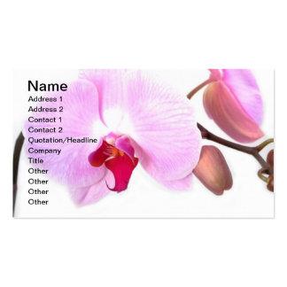 La orquídea florece jardín del destino tarjetas de visita