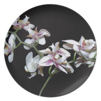 La orquídea florece la placa plato de cena