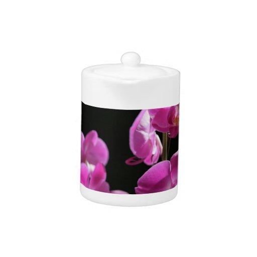 La orquídea florece tetera