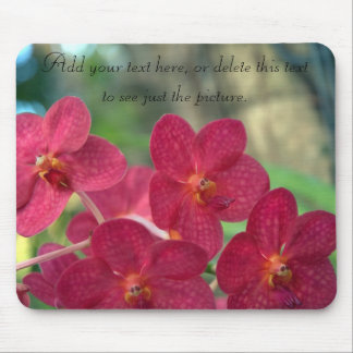La orquídea hace frente al mensaje del tapete de raton