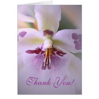 La orquídea le agradece cardar tarjeta de felicitación