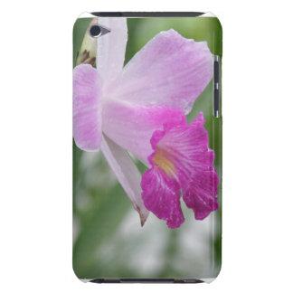 La orquídea mecanografía la caja de iTouch iPod Touch Protectores