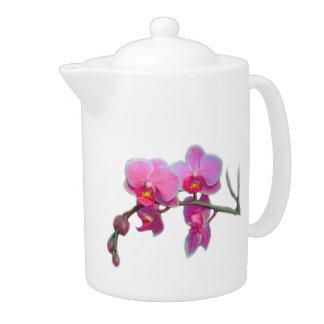 La orquídea rosada florece la tetera
