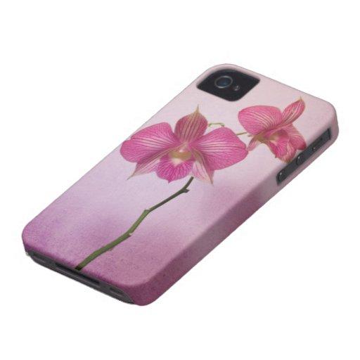 La orquídea rosada rosada florece el caso iPhone4 iPhone 4 Coberturas