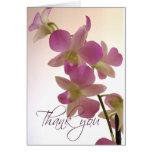 La orquídea suave le agradece las tarjetas de nota