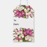 La orquídea tropical florece etiquetas florales etiquetas para regalos