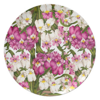 La orquídea tropical florece la placa floral plato de comida