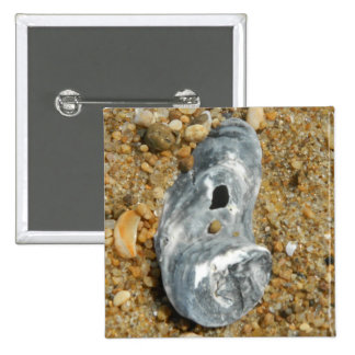 La ostra Shell en guijarro enarena Pins