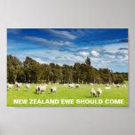 La oveja de FOTC Nueva Zelanda debe venir Póster